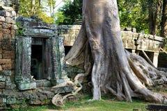 Angkor ruins Royalty Free Stock Photo