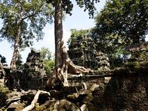 Angkor tempel Arkivbilder