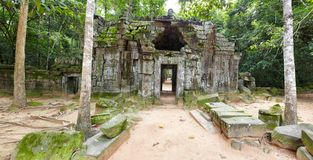 Angkor temple ruins in jungle Royalty Free Stock Photography