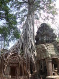 Angkor Thom Royalty Free Stock Photos