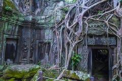 Angkor Thom Cambodia. SIEM REAP , CAMBODIA - OCT 15 :  The Ta Prohm temple in Angkor Thom, Siem Reap Cambodia on October 15 2017 , Angkor Thom was the last and Stock Photo