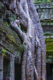Angkor Thom Cambodia Stock Photography