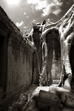 Angkor Thom detail Royalty Free Stock Photo