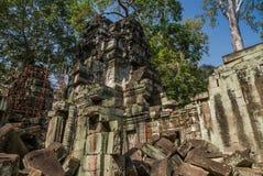 Angkor thom, siemreap, Καμπότζη στοκ εικόνα με δικαίωμα ελεύθερης χρήσης