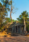 Angkor Vat, complexe de temple de Khmer, Asie Siem Reap, Cambodge Photos libres de droits