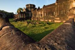 Angkor Vat - temple archéologique de parc Monument du Cambodge images libres de droits
