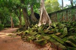 Angkor Wat - ένας γιγαντιαίος ινδός ναός σύνθετος στην Καμπότζη Στοκ Φωτογραφίες