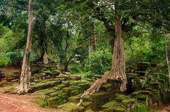 Angkor Wat - ένας γιγαντιαίος ινδός ναός σύνθετος στην Καμπότζη Στοκ φωτογραφίες με δικαίωμα ελεύθερης χρήσης