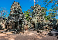 Angkor wat Καμπότζη TA prohm Στοκ Φωτογραφίες