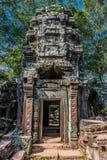 Angkor wat Καμπότζη TA prohm Στοκ Εικόνες