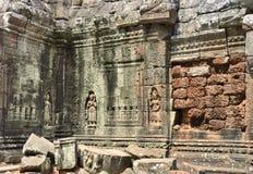 Angkor wat Καμπότζη TA prohm Στοκ φωτογραφίες με δικαίωμα ελεύθερης χρήσης