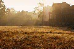 Angkor Wat (ναός σύνθετος στην Καμπότζη) το πρωί Στοκ Εικόνες