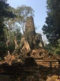 Angkor Wat в Siem Reap, Камбодже Angkor Wat самый большой индусский висок сложный и самый большой вероисповедный памятник в мире  стоковая фотография rf