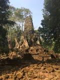 Angkor Wat в Siem Reap, Камбодже Angkor Wat самый большой индусский висок сложный и самый большой вероисповедный памятник в мире  стоковое изображение