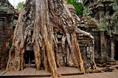 Angkor Wat Fotografia Stock