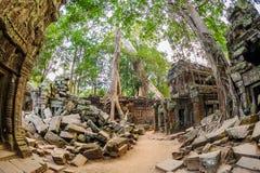 Angkor Wat 16 Fotografía de archivo