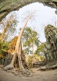 Angkor wat 33 Στοκ Εικόνα