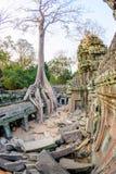 Angkor wat 11 Στοκ φωτογραφία με δικαίωμα ελεύθερης χρήσης