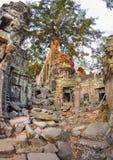 Angkor wat 12 Στοκ Εικόνα