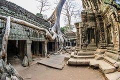 Angkor Wat 14 стоковые фотографии rf