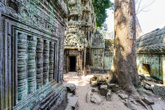 Angkor wat 27 Στοκ φωτογραφία με δικαίωμα ελεύθερης χρήσης