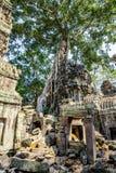 Angkor wat 29 Στοκ Εικόνες
