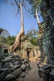 Angkor wat 42 Στοκ Εικόνα