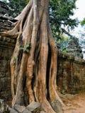 Angkor Wat Στοκ Εικόνα