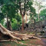 Angkor Wat Стоковое Изображение