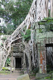 Angkor Wat architecture detail Royalty Free Stock Photo