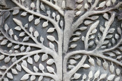 Angkor Wat Bodhi Tree Close-Up Relief. Angkor Wat sculptural relief in stone of ancient stylized bodhi tree Stock Images