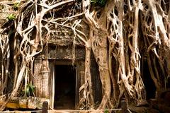 Angkor Wat, Cambodia Royalty Free Stock Photos