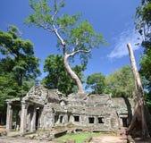 Angkor Wat ,Cambodia Stock Photos