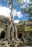 Angkor Wat, Cambodja arkivfoton
