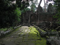 Angkor Wat colors. A stone path covered by moss in the Angkor Wat complex near Siem Reap (Cambodia Stock Photography