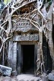 Angkor Wat - de tempel van Ta Prohm royalty-vrije stock fotografie