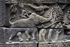 Angkor Wat Elephant Warrior Close-Up Relief Fotografia de Stock Royalty Free