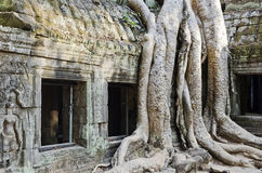 Angkor wat famous landmark temple detail near siem reap cambodia Royalty Free Stock Photos