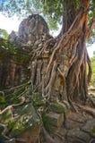 Angkor Wat forntida tempel Royaltyfria Foton