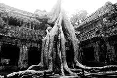Angkor Wat i Cambodja Arkivfoton