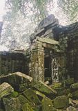 Angkor wat jungle temple cambodia Royalty Free Stock Images