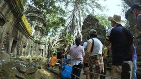 Angkor Wat Jungle Temple Tourists stock video footage