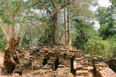 Angkor Wat, Kambodja royalty-vrije stock afbeelding