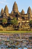 Angkor Wat, Kambodscha. stockfotografie