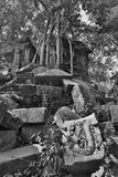 Angkor Wat of Kampuchea Royalty Free Stock Image