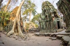 Angkor wat 4 Stock Photos