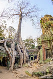 Angkor wat 9 Royalty Free Stock Photo