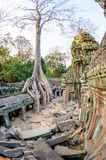 Angkor wat 11 Royalty Free Stock Photography