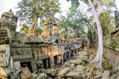 Angkor wat 2 Royalty Free Stock Photo