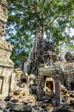 Angkor wat 29 Stock Photo